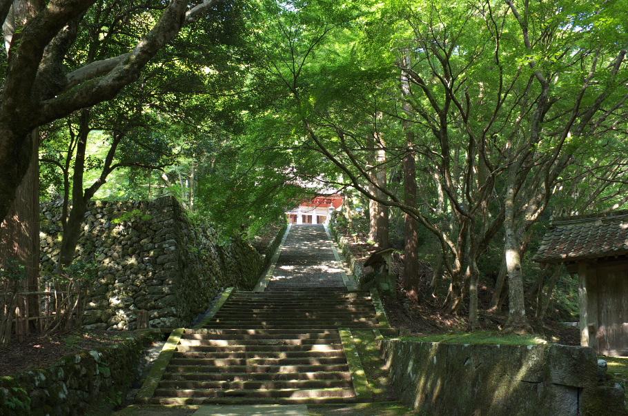 鰐淵寺 №5