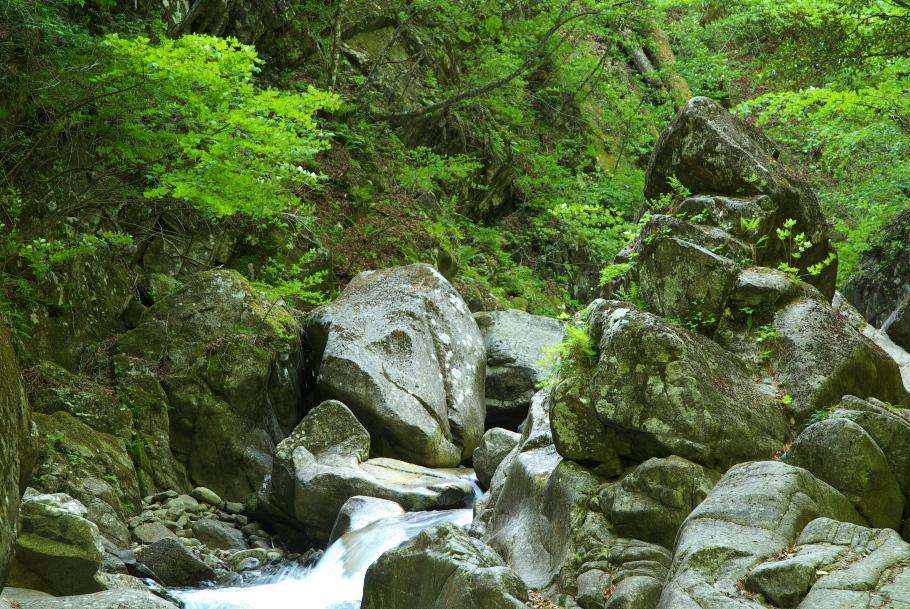 西沢渓谷 №3